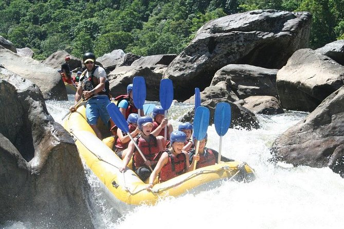 Barron River Half-Day White Water Rafting from Cairns - Australia Accommodation
