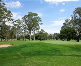 Singleton Golf Club - Australia Accommodation