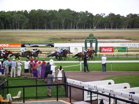 Pinjarra Race Club - Australia Accommodation