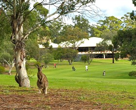 Pambula Merimbula Golf Club - Australia Accommodation