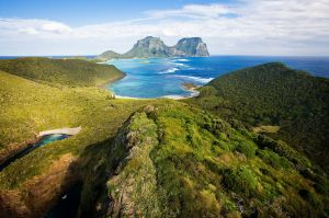 The Lord Howe Island Community Markets - Australia Accommodation