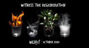 Wildfest - Annual Festival - Australia Accommodation