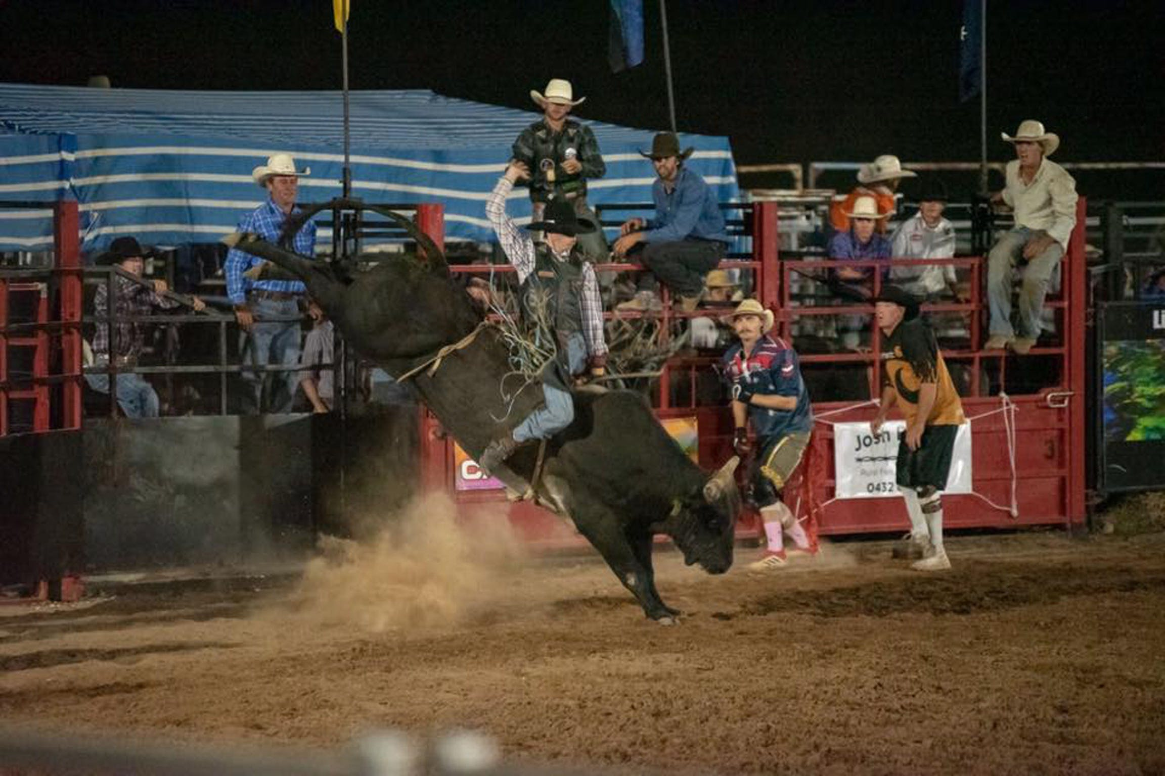 Black Opal Bull and Bronc Ride - Australia Accommodation