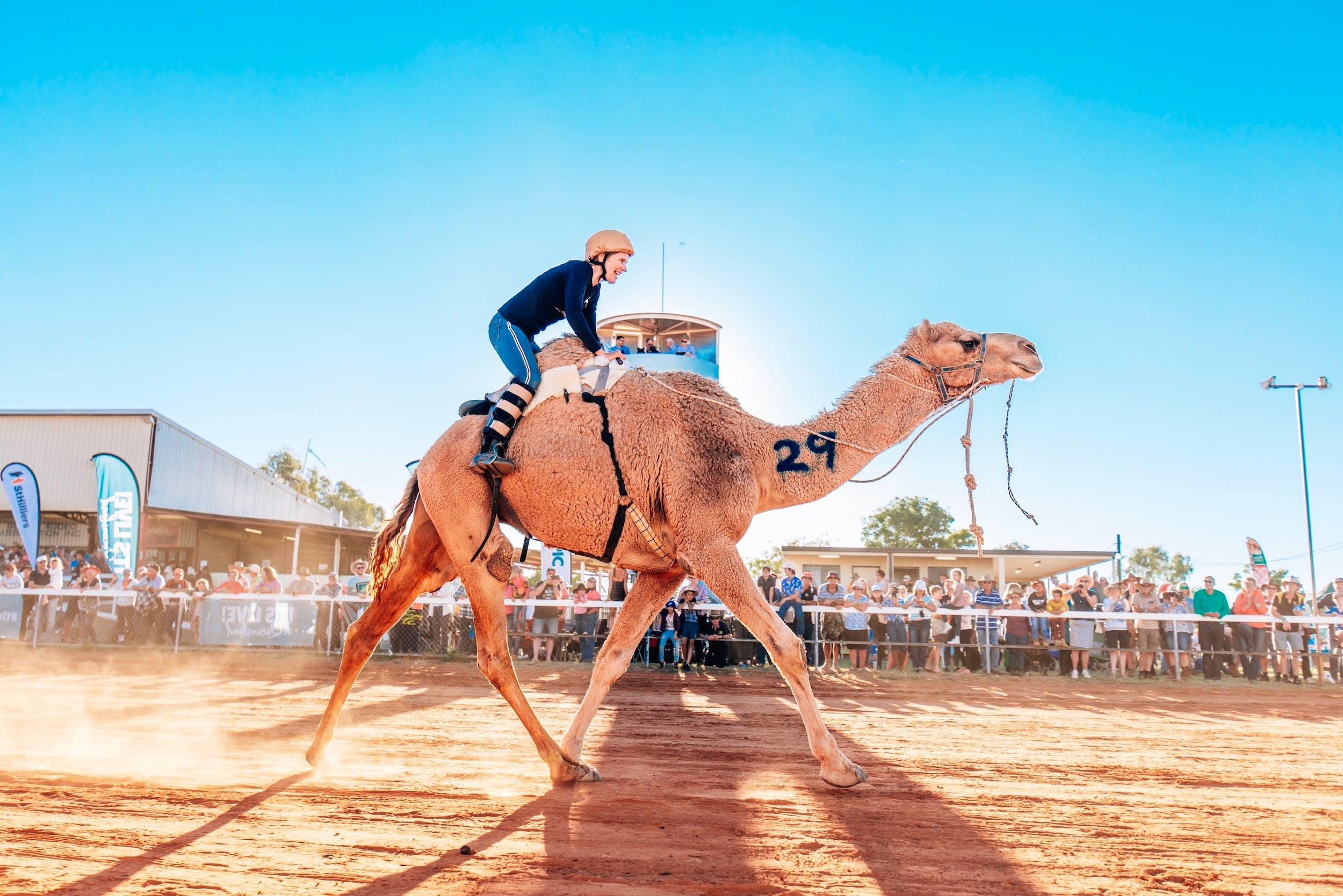 Boulia Camel Races - Australia Accommodation