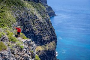 Seven Peaks Walk at Pinetrees Lord Howe Island - Australia Accommodation