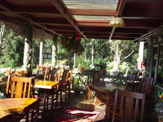 Suzannes's Hideaway Cafe - Australia Accommodation